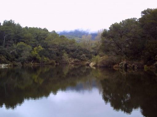 Los misterios del pantano de Can Bogunya Can-bogunya